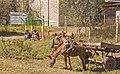 Scenes from Bahir Dar, Ethiopia (2209378377).jpg