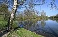 Schwanenteich in Waldenburg.2H1A9413WI.jpg