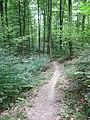 Schwarzwald-Schwäbische-Alb-Allgäu-Weg (HW5) im Naturpark Schönbuch - panoramio.jpg
