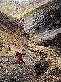 Scree run above Hartfell Spa.jpg