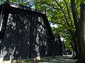 Shade of Tree - panoramio.jpg