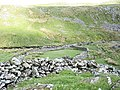 Sheepfold above the Mawddach - geograph.org.uk - 477128.jpg