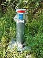 Shirley Balla Swamp Reserve, September 2020 06.jpg