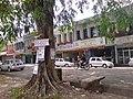 Shop lot - panoramio.jpg