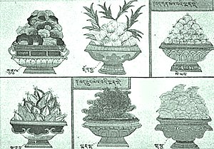 Six common medicinal herbs in Tibet according to the Blue Beryl Treatise by Sangye Gyamtso (1653-1705)..