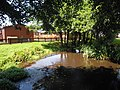 Smithys Pond Beeston Regis 1.JPG