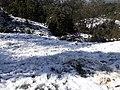 Snow in Kakani 20190228 102911.jpg