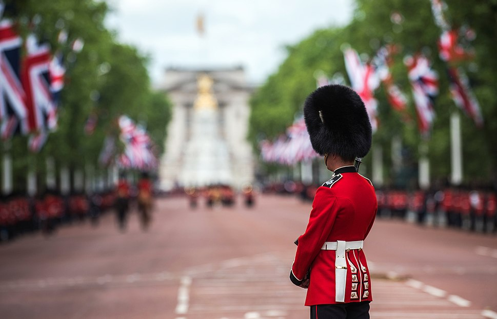 Soldier Lining the Route of the Queen%27s Birthday Parade in London MOD 45155756