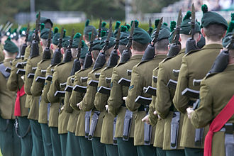 Hackle - Soldiers of the Royal Irish Regiment