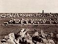 Sommer, Giorgio - Minerva- und Apollo-Tempel in Selinunte (Zeno Fotografie).jpg