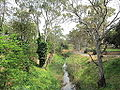 South Para R from Gawler Bridge 1.jpg