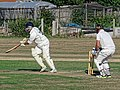 Southwater CC v. Chichester Priory Park CC at Southwater, West Sussex, England 086.jpg