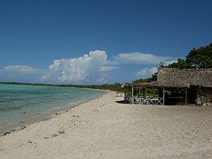 Cayo Coco - White sand beach in Cayo Coco