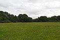 Spital Fields, Wirral 3.jpg