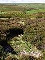 Spring above Inner Alscott Combe - geograph.org.uk - 496478.jpg