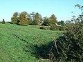 Springhill Farm - geograph.org.uk - 272504.jpg