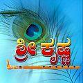 Sri Krishna .jpg