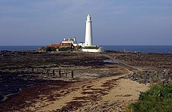 St Mary's lighthouse at Whitley Bay - geograph.org.uk - 1259894.jpg
