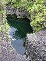 Starr-030729-0089-Hedychium coronarium-habitat-Hanawi stream-Maui (24611726356).jpg