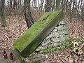 Stary cmentarz Wiązownica Mała 2013 01.JPG