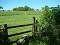Stile on footpath, North Tawton, Devon - geograph.org.uk - 448656.jpg