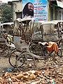 Still Life with Puppies and Rickshas - Varanasi - Uttar Pradesh - India (12519456123).jpg