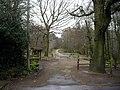 Stoke Park Wood, Bishopstoke - geograph.org.uk - 148280.jpg