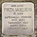 Stolperstein für Frieda Nagelberg 2.jpg