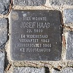 Stolpersteine Regensburg Haas.jpg