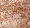 Stone texture - 2921.jpg