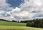 Strassburg Sankt Peter ob Gurk Landschaft mit Wiesen und Wäldern 19072017 0247.jpg
