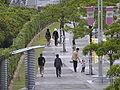 Stroll road that runs to muscat stadium.JPG