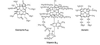 Dehalogenation - Structure of macromolecules used in dehalogenation reaction