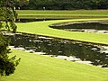 Studley Royal, water garden - geograph.org.uk - 446131.jpg