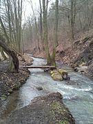 Suchomastský potok, pod Havlíčkovým Mlýnem.jpg