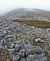 Summit ridge of Beinn Bheigier, Islay - geograph.org.uk - 274296.jpg