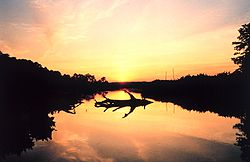 Sunset over a marsh at Cardinal Cove, on the Patuxent River.