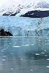 Surprise Glacier ENBLA07.jpg