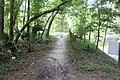 Suwannee River State Park Suwannee River Trail 1.jpg