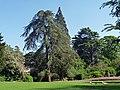 Sydney Gardens, Bath (geograph 3829585).jpg