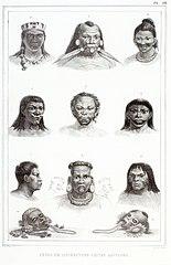 Têtes de differéntes castes sauvages