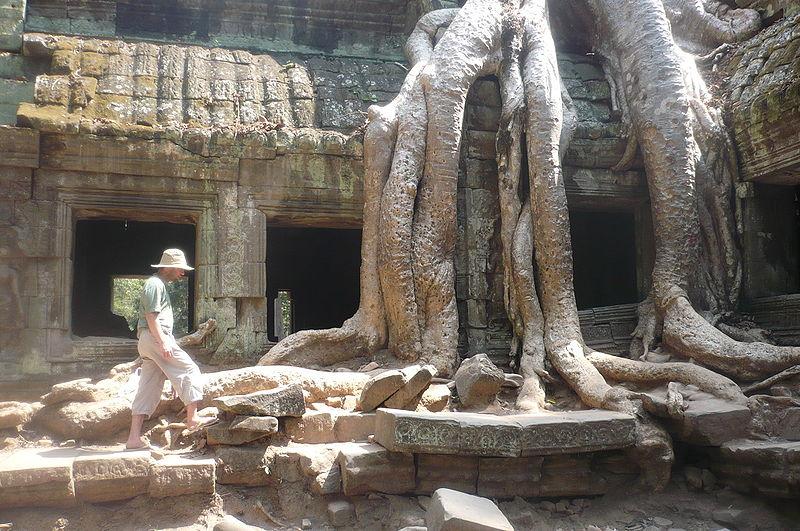 Datei:TaProhm-Angkor-Cambodia.JPG