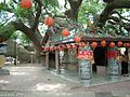 Taichung County, Houli Township, Yuemei Village, cloud Tau Road, Camphor tree - 1400 years old - panoramio (3).jpg
