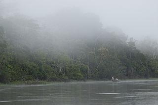 Iquitos várzea