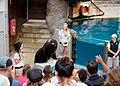 Taronga Zoo seal show - panoramio.jpg
