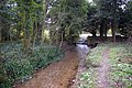 Tathwell Stream - geograph.org.uk - 150171.jpg
