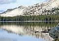 Tenaya Lake Reflection, Yosemite 5-20-15a (19124408671).jpg