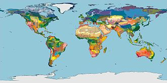 Ecoregion - Terrestrial Ecoregions of the World (Olson et al. 2001, BioScience)