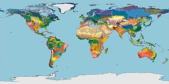 Ecoregion - Terrestrial Ecoregions of the World (Olson et al. 2001, BioScience)