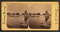 The Harbor, from Robert N. Dennis collection of stereoscopic views.png